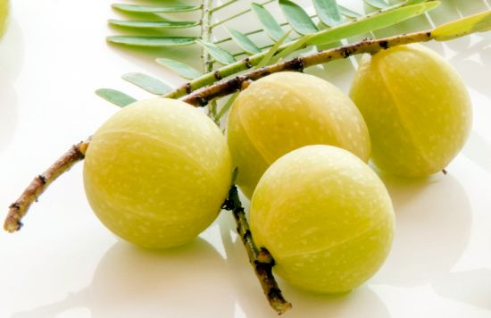 The Amazing Health Benefits Of Indian Amla
