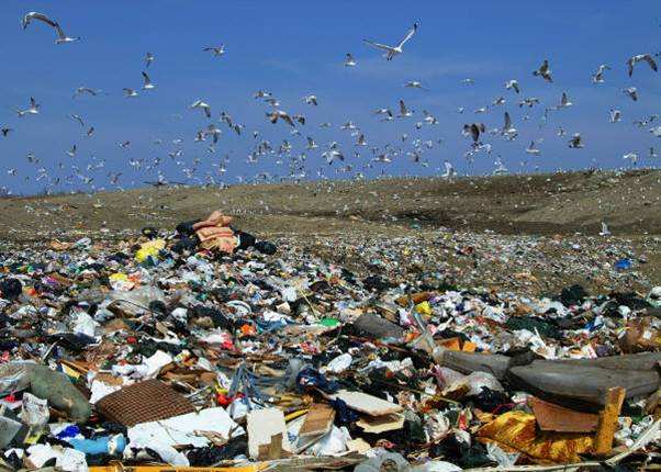 Sanitary Landfills & Disposal Of Waste To Save The Globe