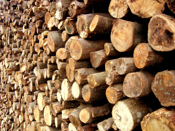 Importance And Uses Of Biomass Fuel