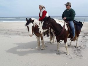 Tips and Suggestions For Long Horse Riders — Factors You Must Consider When Planning A Trip