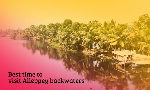 Best time to visit Alleppey backwaters