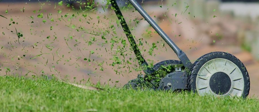4 Best Methods For A Healthy Lawn