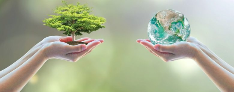 How To Inspire Environmental Awareness In Employees And Customers