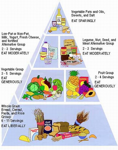 Healthy Meal Plan