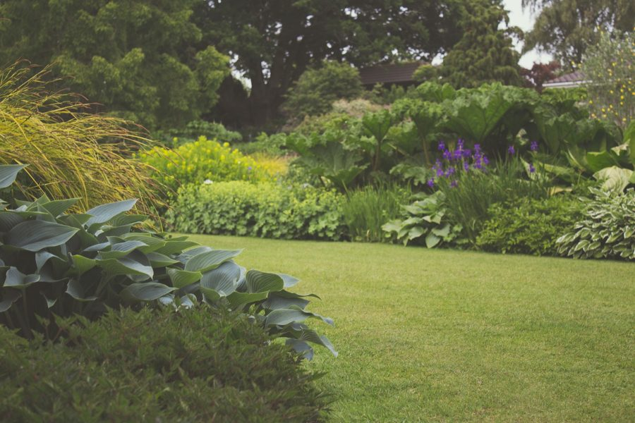 Little Improvements That Will Make A Big Difference to Your Backyard This Summer